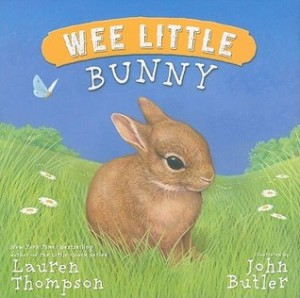 Wee Little Bunny book cover