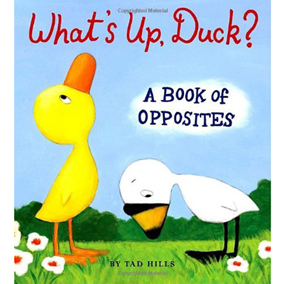 Cover of the book WHAT'S UP, DUCK? by Tad Hills