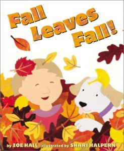 fall leaves fall cover image
