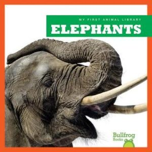 elephants cover image