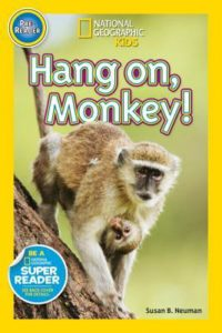 hang-on-monkey