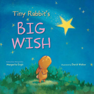 Tiny rabbit's big wish cover image