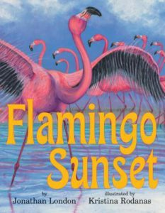 Flamingo Sunset book cover