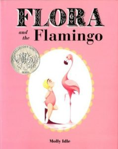 Flora and the Flamingo book cover